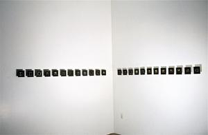 Gifts from the Cats, Installation View